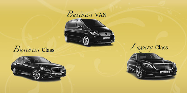 Private Chauffeur in Marbella