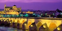 Córdoba Private Guided Tour