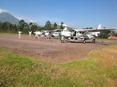 4 Day Gorilla Domestic Fly In Safari
