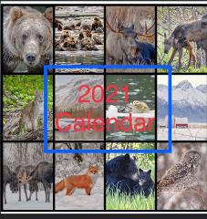 2021 Alaska Calendar - Photographer Amy Bragg