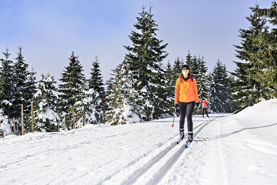 Ski - Cross Country Backcountry Pkg (Ski/Boot/Poles & Gear Bag)
