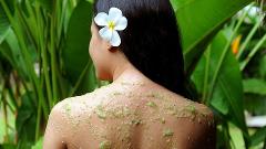 Garden Mint Escape Body Treatment
