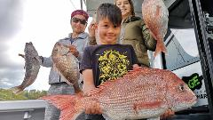 Shared Morning Snapper Trip