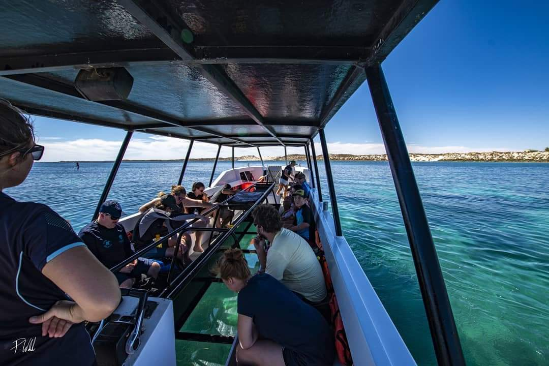 2 hour Coral Viewing & Snorkel Cruise