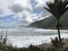 Heaphy Track Great Walk - Guided Five Day Walk