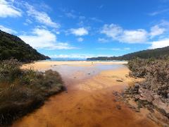 Abel Tasman Coast Track - Four Day Walk