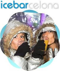 The Ice Bar Experience