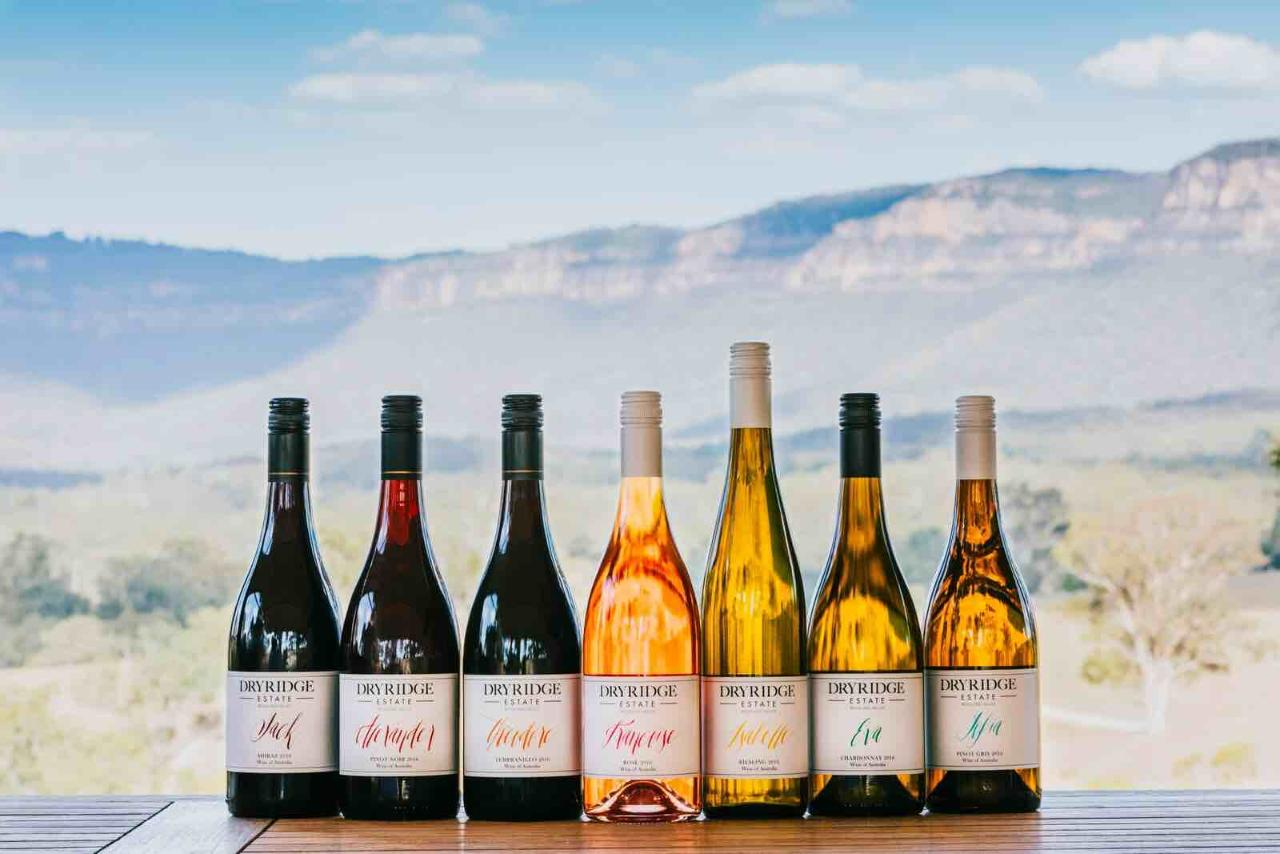 Taste of the Blue Mountains - Wine Tasting & Lunch, Beer paddle, Cider & Gin Tasting