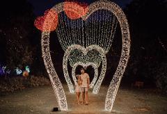 Hunter Valley Christmas Lights with Beer, Wine & Cheese