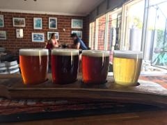 BREWERY TOUR HALF DAY