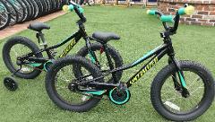 (1q) Boys Bike - 16″