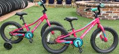 (1p) Girls Bike - 16″