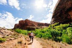 Grand Canyon Air & Hiking Tour