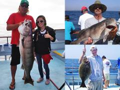 1/2 Day Fishing Trips & Limited Load 1/2 Day Fishing Trips