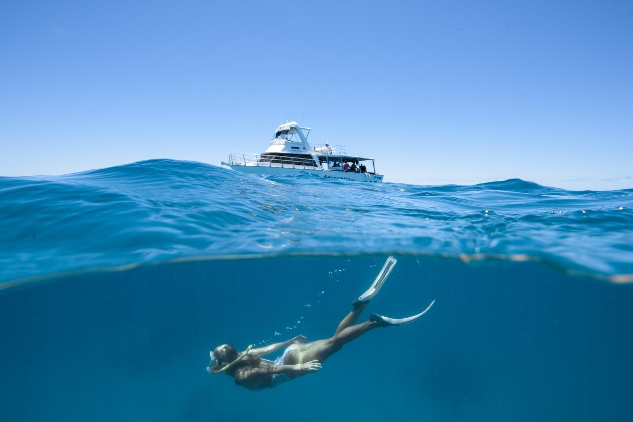 Great Barrier Reef Day Trip - Snorkeling