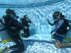 Discover Scuba Diving - Pool Session