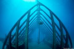 Great Barrier Reef Day Trip and MOUA - Certified Diver