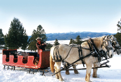 SLEIGH Ride (NOV 15TH - MARCH 22TH)