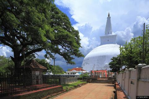 Sacred CIty of Anuradhapura and Mihintale from Sigiriya