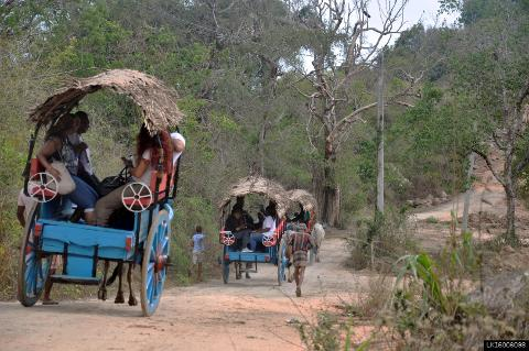 Sigiriya Rock, Village Tour and Minneriya from Dambulla