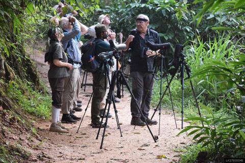 Bird watching and trekking in Kitulgala (Private + Guided)