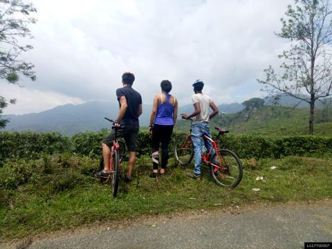 Ella Cycling Tour - Adventure on Two Wheels (Waterfallen: 45 km)