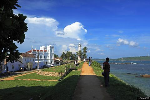 Virgin White Tea and Galle City Tour from Colombo