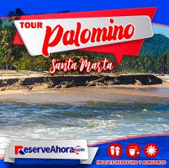Tour a Palomino