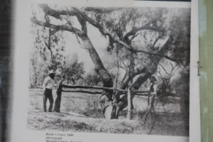 Cameron Corner Country Innaminka Dig Tree Coongie Lakes Tour from Broken Hill to Broken Hill 5 days