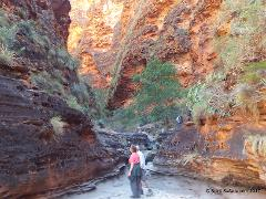 Kimberley Darwin to Broome Gibb River Road Home Valley Manning Gorge Mt Hart 8 days