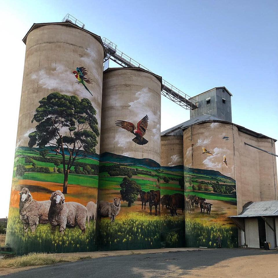Silo Art Trail Mungo NSW Outback Tours Sydney to Broken Hill 6 days