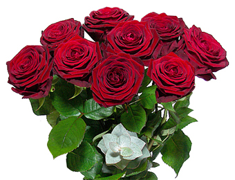 Paris red roses hotel delivery