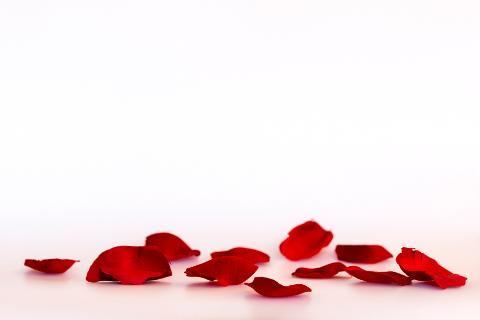 Red silk roses petals
