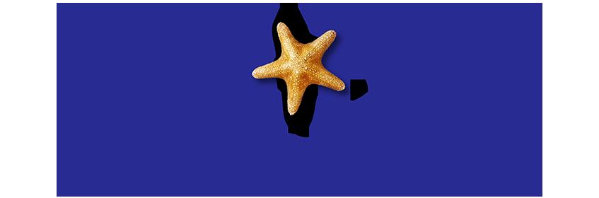 Sealife Sydney Aquarium
