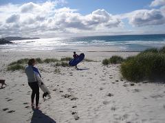 Blue Lines Islands Surf Tour