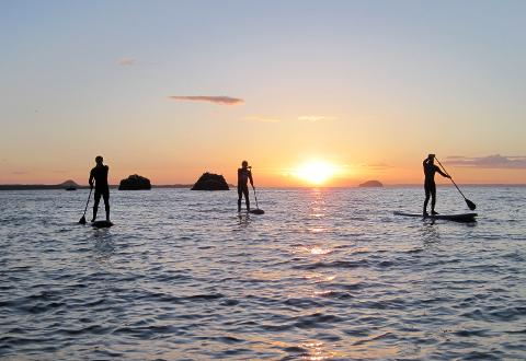 Stand Up Paddle Day Tour