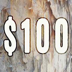 $100 Dollar Amount Gift Voucher