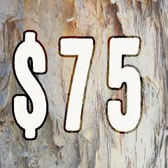 $75 Dollar Amount Gift Voucher