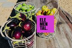 Elemental AKL – 'Taste Of The Farm'