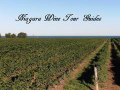 Wine and Beer Sip and Savour Afternoon Tour (1:00 pm start)