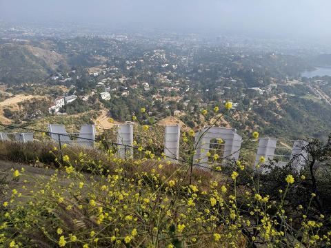 Private Hike to Hollywood Sign, via Three Peaks