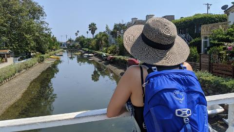 Private Walking Tour of Venice Beach