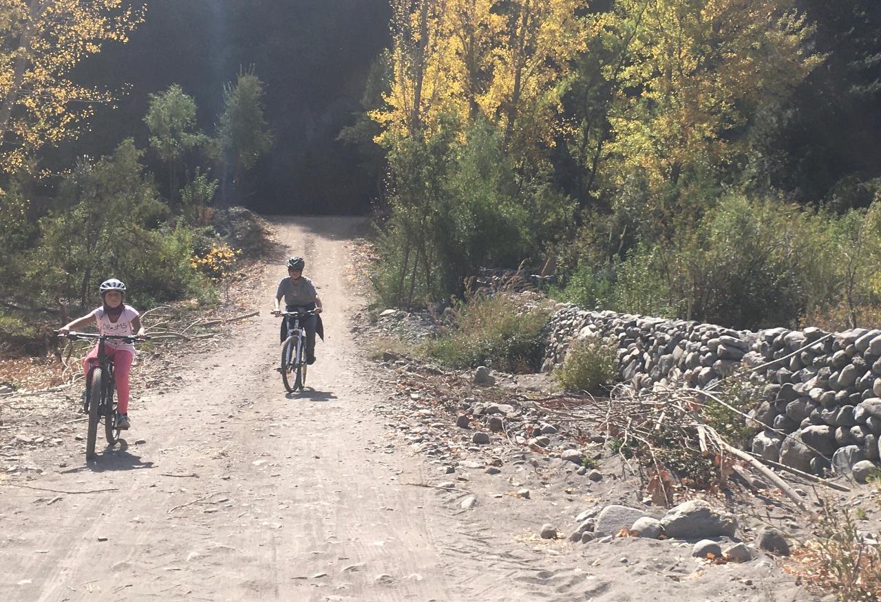 Bicycle Rental / Arrendar Bicicletas