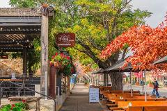 Adelaide Hills Wineries and Hahndorf