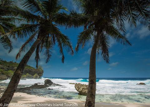 The Wonders of Christmas Island Photographic Tour (deposit only)