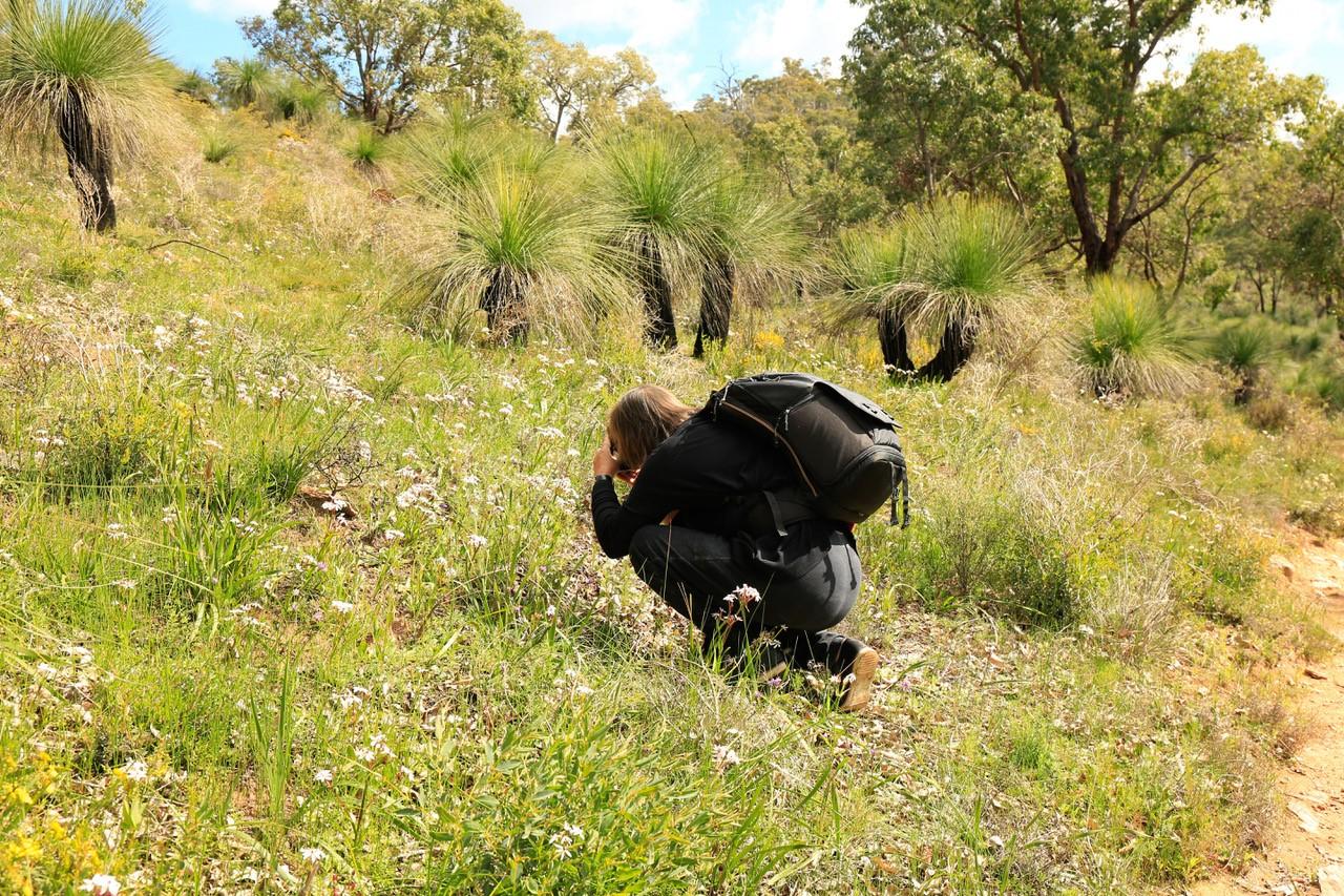 Amazing Wild Flowers of Western Australia 4 Day Tour