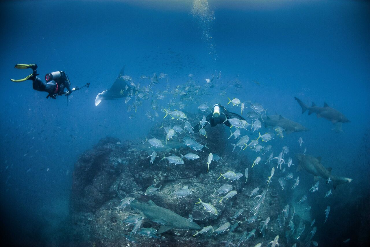 Double Dive Charter for Open Water Divers