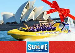 SEALIFE AQUARIUM & Thunder Twist Gift Card
