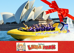 Luna Park & Thunder Twist Gift Card