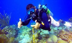 Turneffe Atoll Dive